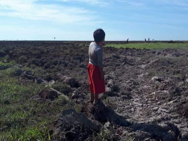 Criança indígena observa a terra lavrada em fazenda (Foto: Cimi/Divulgação)