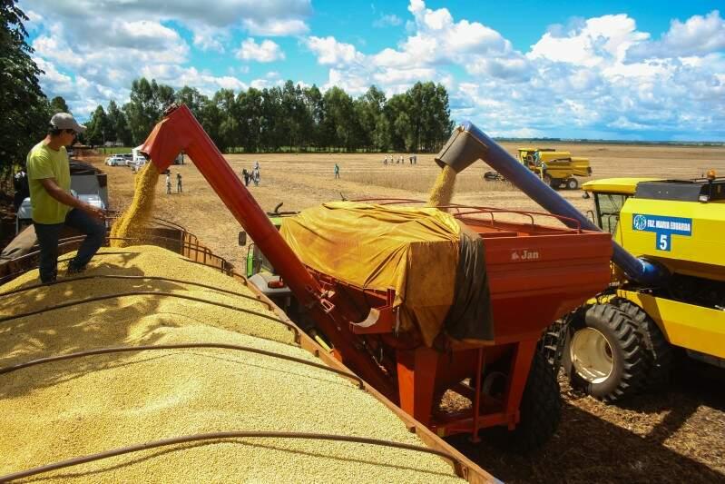 Colheita de soja será atrasada, entre fevereiro e abril, quando há possibilidade de chuvas (Foto: Arquivo/Marcos Ermínio)