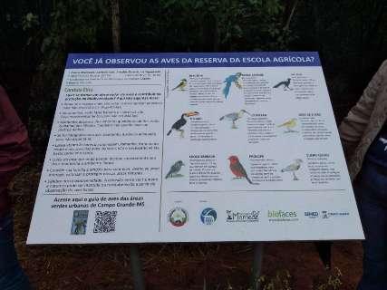 Alunos sinalizam trilha em reserva para observação de pássaros e árvores