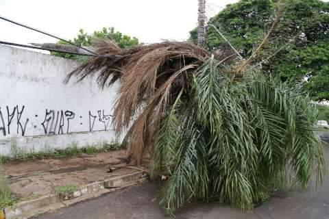 Chuva derruba fiação na Bandeirantes e moradores ficam sem energia