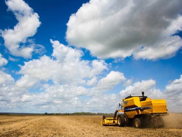 Máquina trabalhando na colheita de soja em MS (Foto: Marcos Ermínio/arquivo)