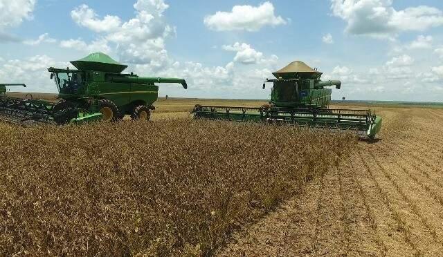 Apenas 5,4% de 2,52 milhões de hectares de soja, foram colhidos em MS. (Foto: Aprosoja/MS)