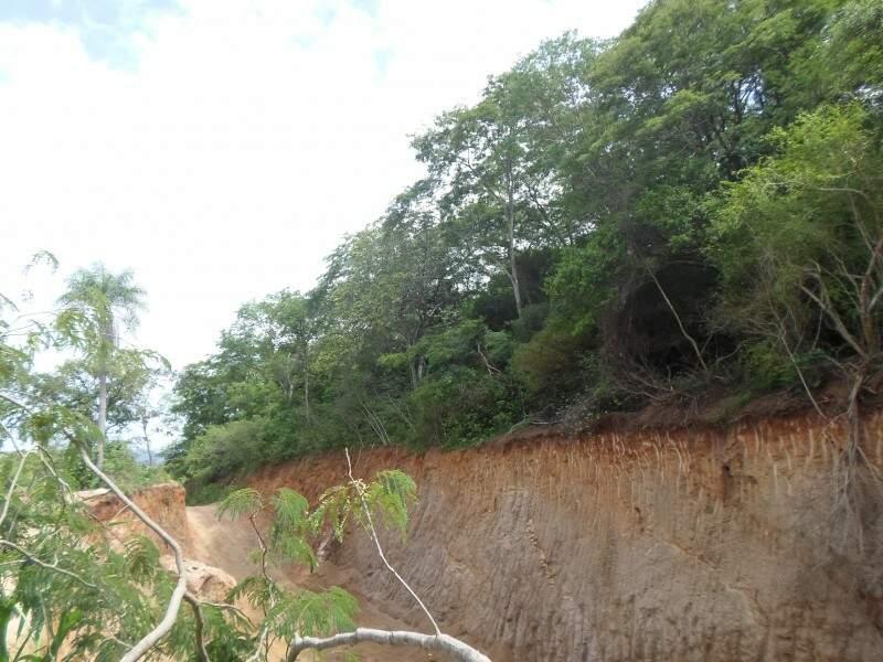 Irregularidade acontecia em morro de área de preservação permanente. (Foto: Divulgação PMA)