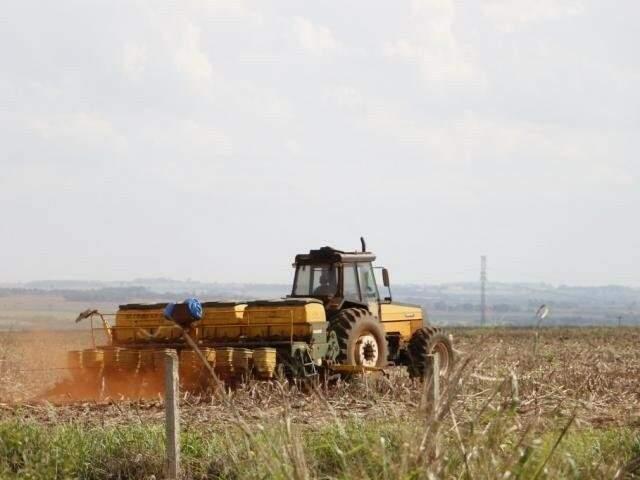 Semeadura da soja em Mato Grosso do Sul (Foto: Helio de Freitas)