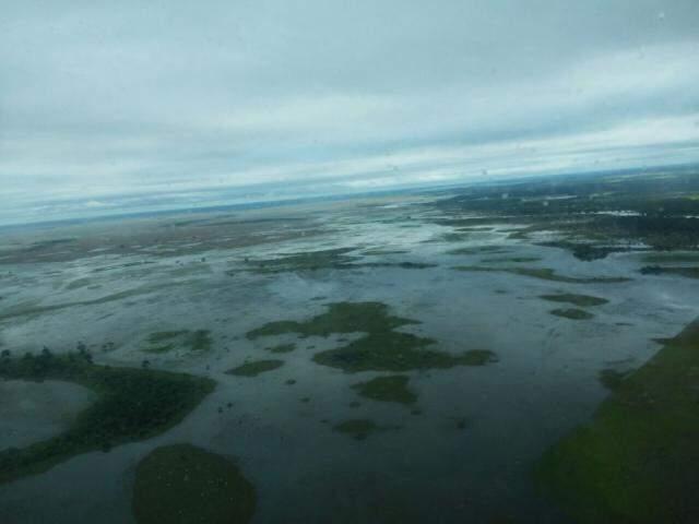 Cheia no pantanal corumbaense registrada com ajuda de uma aeronave (Foto: Direto das Ruas)