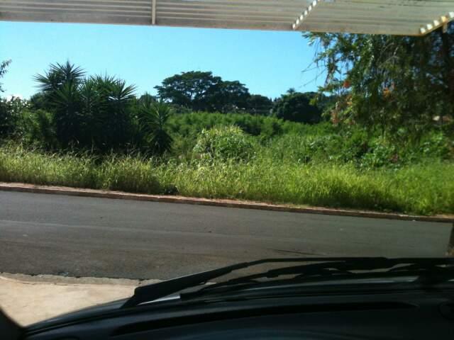 Segundo morador, terreno junta lixo e traz perigo. (Foto: Fabrício Miranda)