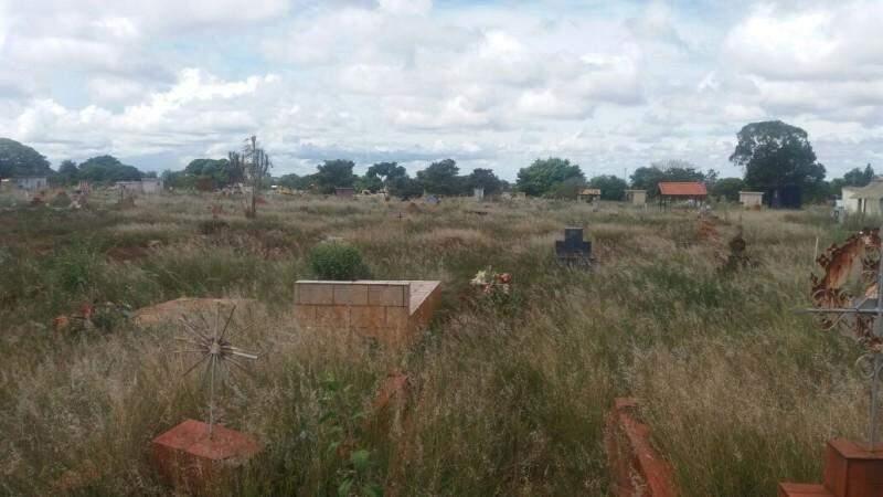 Mato alto cobre as sepulturas e atrapalha passagem dos visitantes no cemitério. (Foto: Direto das Ruas)