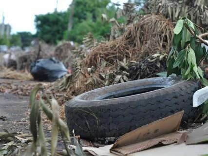 'Lixão' em terreno baldio invade rua no bairro Caiçara