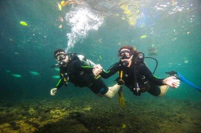 Com as férias terminando, mergulhar no Rio da Prata é experiência inesquecível