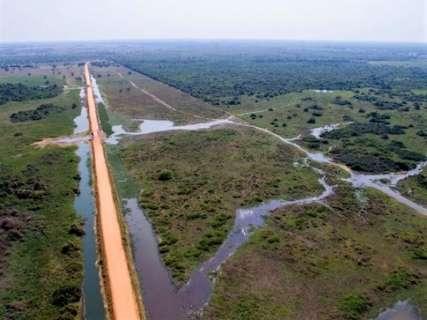 Rodovia de 450 quilômetros para escoar grãos é considerada ameaça ao Pantanal