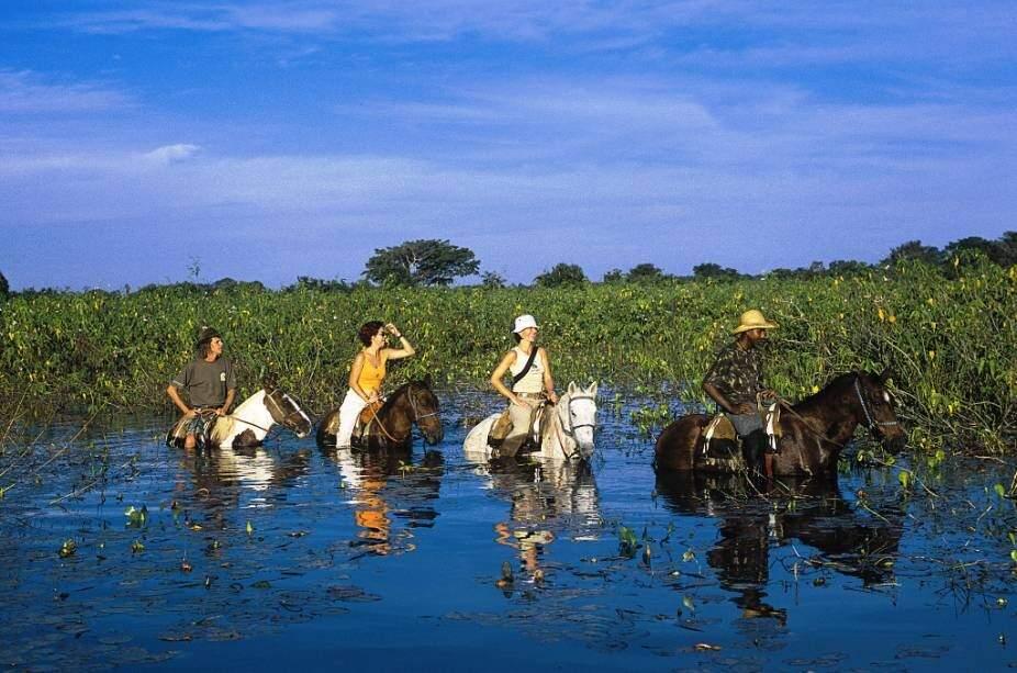 Com o Pantanal em época de cheias, o passeio a cavalo é uma boa alternativa para curtir a vida pantaneira (Foto: Divulgação)