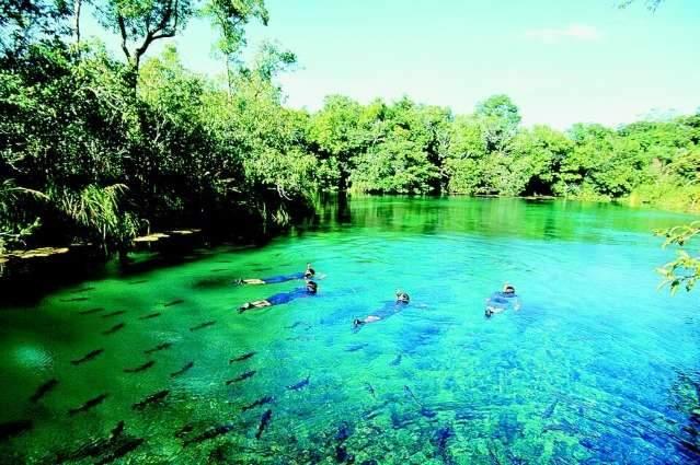 Descubra o que ver e fazer nos principais destinos de Mato Grosso do Sul