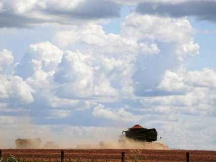 Sob sol forte, máquina rompe silêncio do campo para colher soja em MS