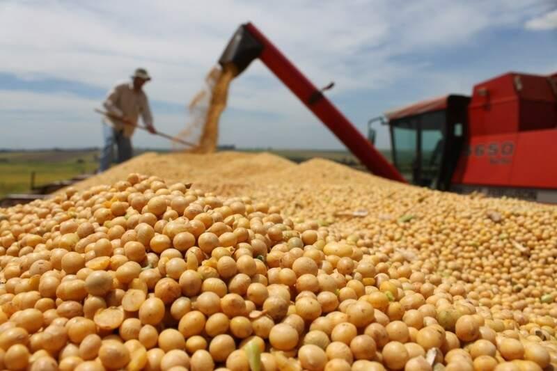 Exportações de produtos como a soja são favorecidas com o dólar alto, (Arquivo)