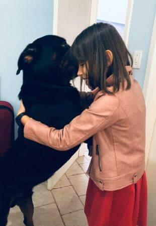 Esse é o Loli, cachorro de Mirela que fugiu e ainda não voltou.