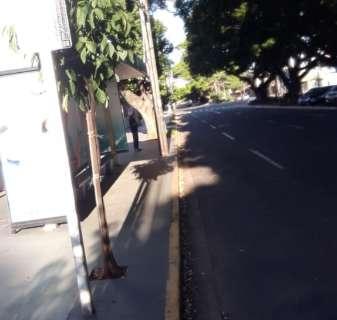 Sem ônibus, tem trabalhador que está sendo obrigado a ir embora a pé
