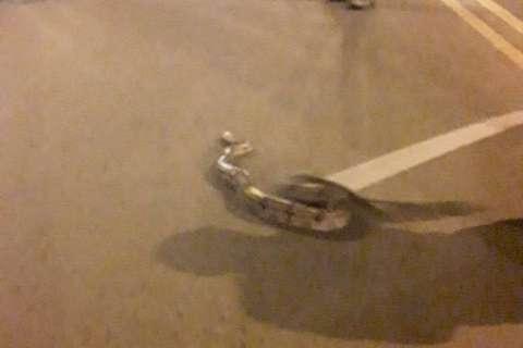 """Motorista vê jiboia e a ajuda """"atravessar"""" a rua"""