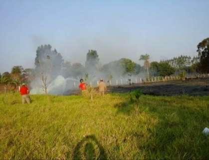 Com período de estiagem, queimadas no Estado aumentam em 133%