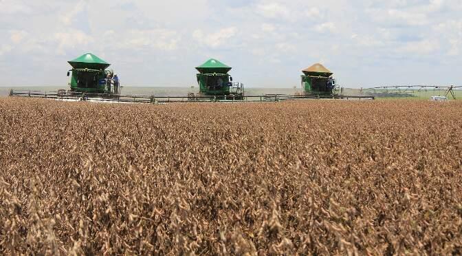 Produção recorde de soja está sendo finalizada nas lavouras de MS. (Arquivo)