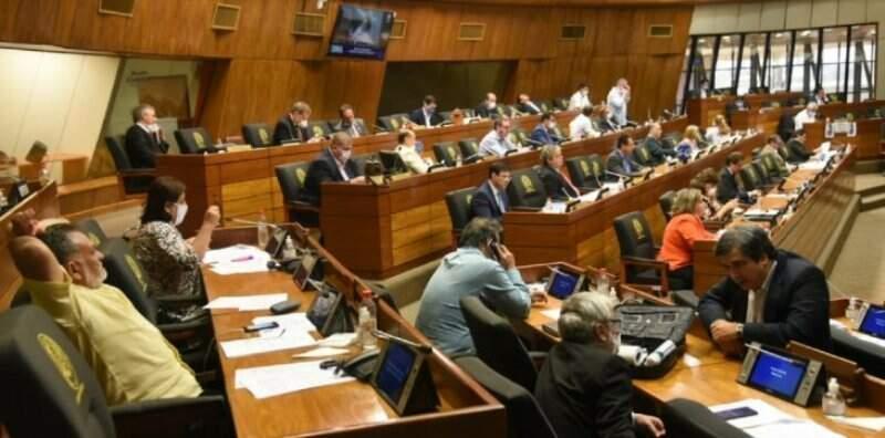 Plenário do Senado paraguaio, que aprovou hoje adiamento de eleições municipais por causa da pandemia (Foto: Última Hora)
