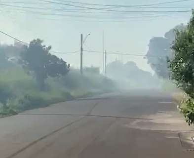 Incêndio em terreno abandonado leva fumaça para casas e incomoda vizinhança