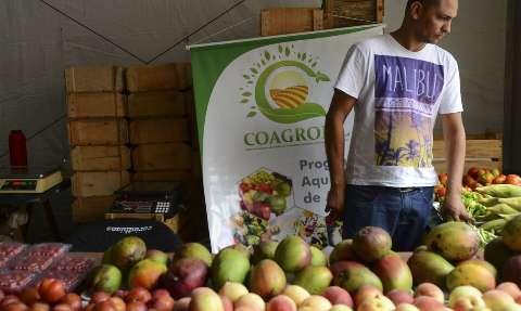 Covid-19: governo reforça recomendações para feiras livres e sacolões