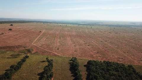 Fazendeira é multada em R$ 93 mil por desmatamento e incêndios em matas