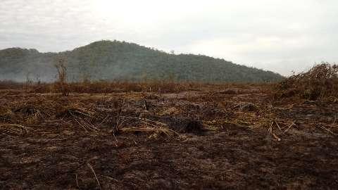 Bombeiros e Ibama monitoram novos focos de queimadas em Corumbá