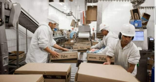 Equipe no setor de embalagem da Friboi, em trabalho antes da pandemia. (Foto: Divulgação)