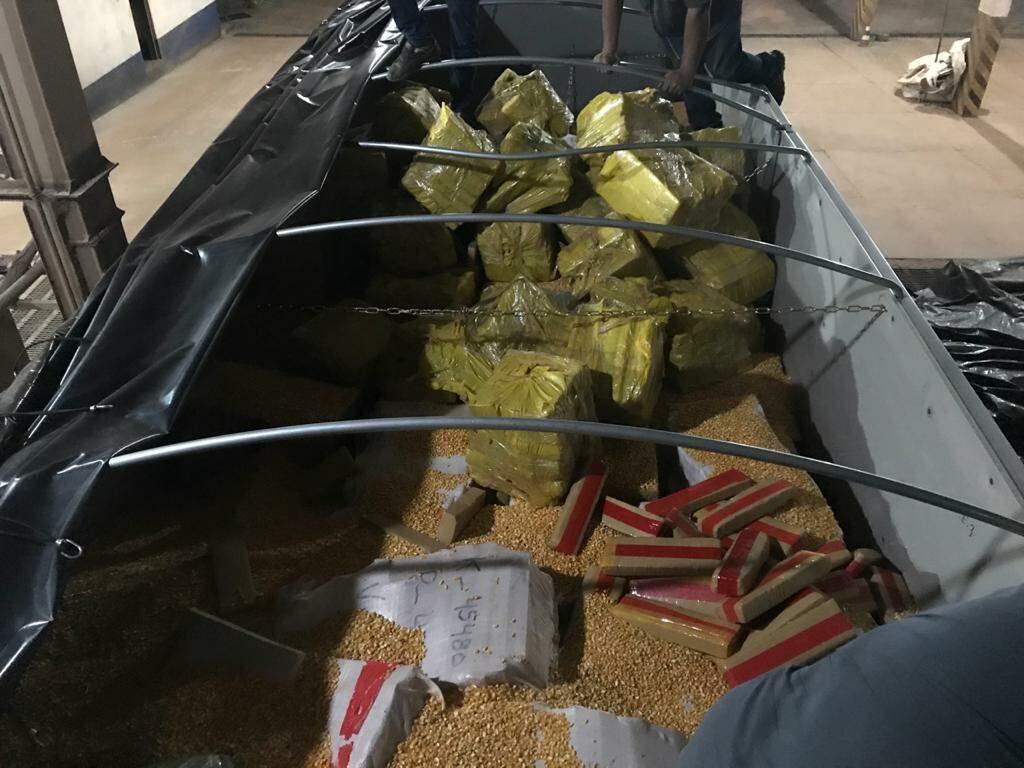 As 28 toneladas de maconha estavam cobertas por pequena camada de milho. (Foto: Divulgação/PF)