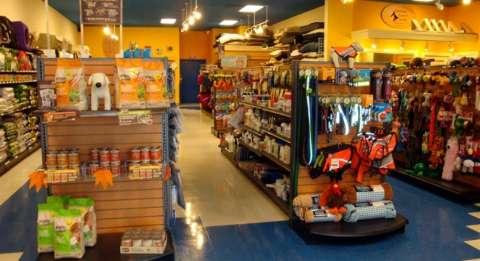Preços de produtos de pet shop podem variar até 250% na Capital