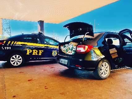 Carro locado em Minas era usado para transportar 212 quilos de maconha