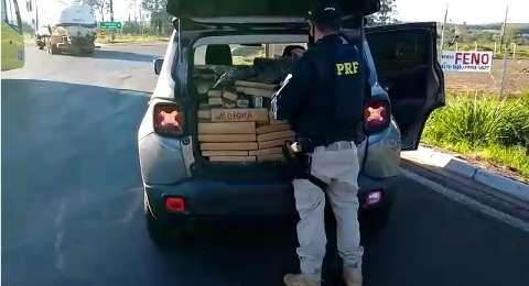 Traficante é preso com meia tonelada de maconha em barreira sanitária