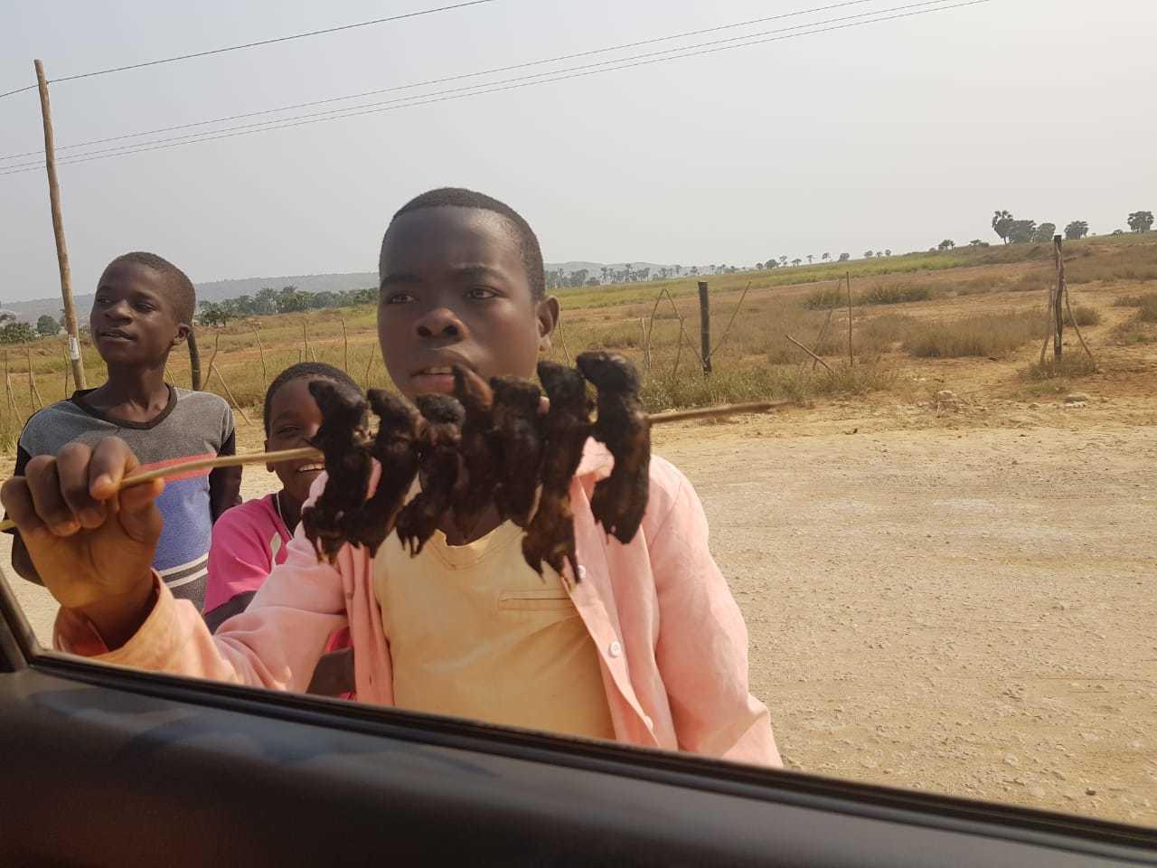 Na estrada entre as cidades de Sumbe e Koquimbo, espetinho à venda. (Foto: Arquivo Pessoal)