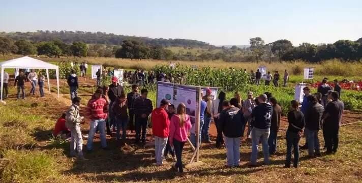 Dia de campo para os alunos de Agronomia da unidade de Cassilândia. (Foto: Uems)