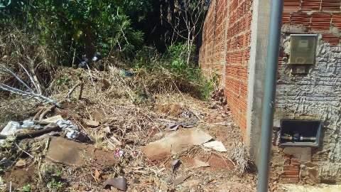 Descaso com terreno baldio faz moradora temer escorpiões no Rancho Alegre