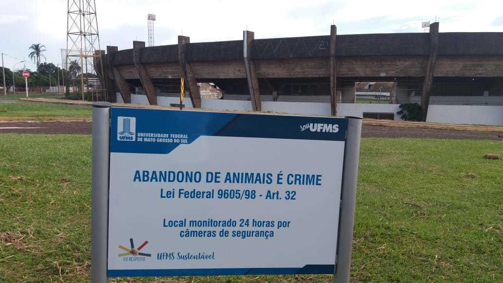 Na universidade existe uma placa informando que abandono de animais é crime. (Foto: Arquivo pessoal)