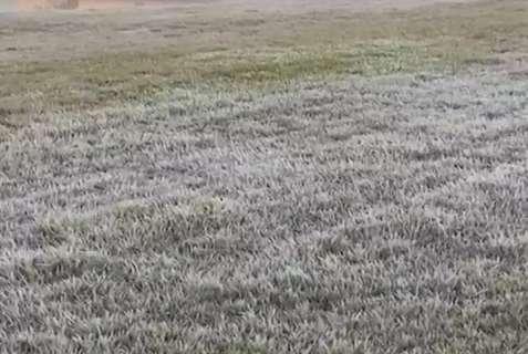 Segunda madrugada fria do inverno tem geada em 8 cidades de MS