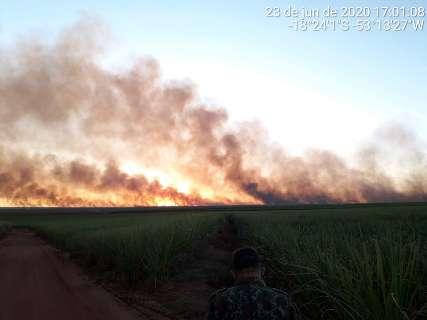 Usina é multada em R$ 294 mil por incêndio em lavoura de cana-de-açúcar