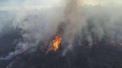"""Pandemia e incêndios """"sufocam"""" região do Pantanal e preocupam Saúde"""