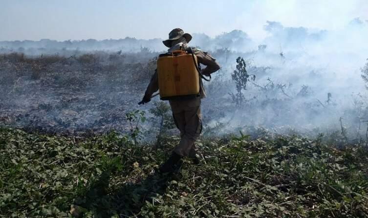 Brigadista apagandos as chamas em um dos pontos de incêndio. (Foto: Diário Corumbaense)