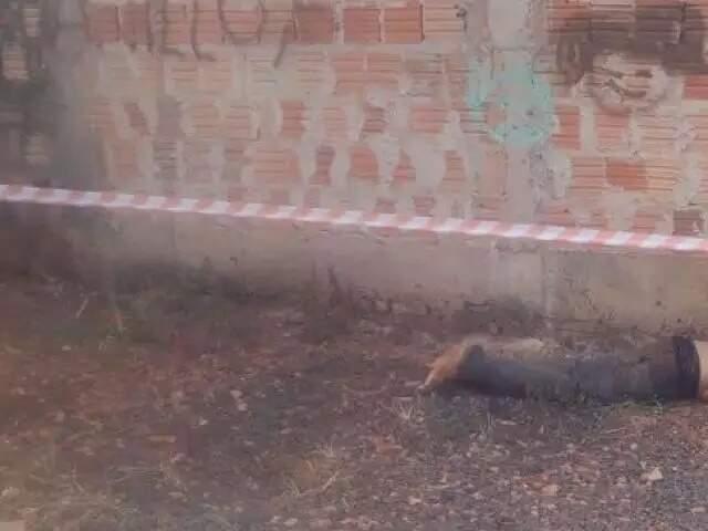Corpo da vítima foi encontrado em terreno na Rua Cambuí (Foto: Clayton Neves/Arquivo)