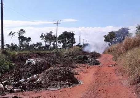 Jardineiro reclama de incêndios recorrentes em terrenos no Jardim Veraneio