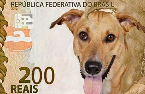 Banco Central anuncia nota de R$ 200 e personagem será lobo-guará