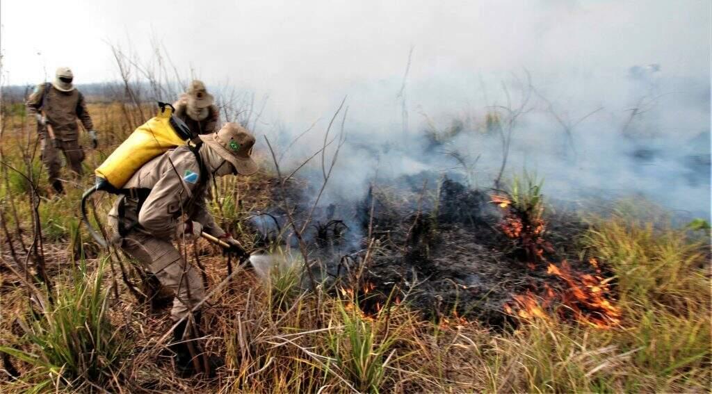 Militares combatendo os focos com bombas costais. (Foto: Saul Schramm)