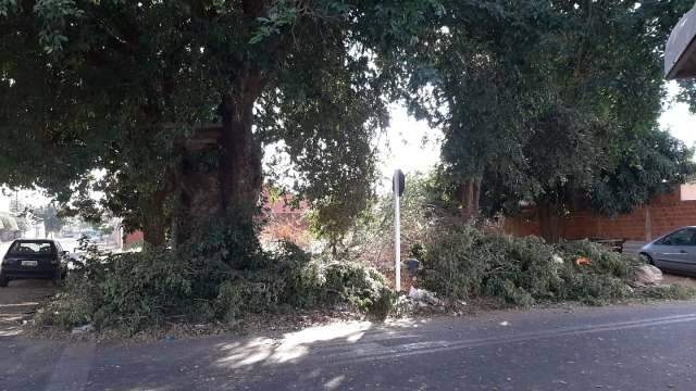 Terreno abandonado preocupa moradores do Tijuca I