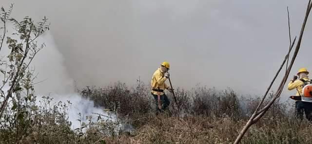 Com 821 mil hectares queimados, Pantanal tem pior julho dos últimos 22 anos