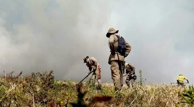 Combate a incêndio é intensificado no Parque Nacional do Pantanal, divisa com MT