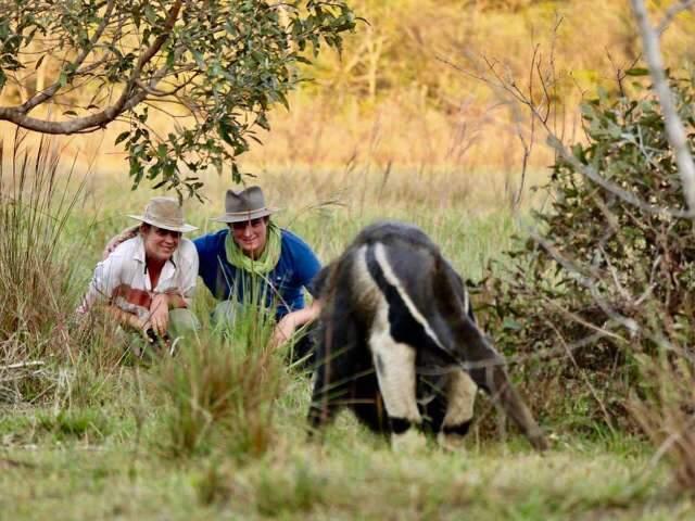 No Pantanal, que tal curtir isolamento em casa com baía privê?