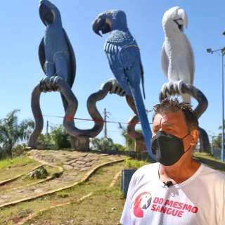Arara de monumento voltará a ser vermelha depois de mil doações